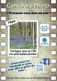 """Concours photo """"Promenez-vous dans les bois"""""""