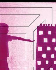 Les jumelages font leur cinéma - San Dona Di Piave